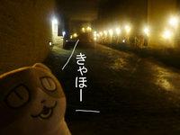 m_100920n.jpg